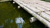 新山.夢湖:shmh-10.jpg