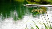 新山.夢湖:shmh-25.jpg